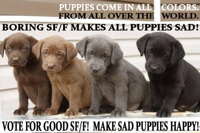 sad puppy meme